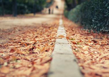 Trastornos a solucionar - Psicólogo a domicilio en Madrid